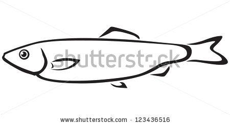 Contour Black White Sea Fish Sprat Stock Vector 123436516.