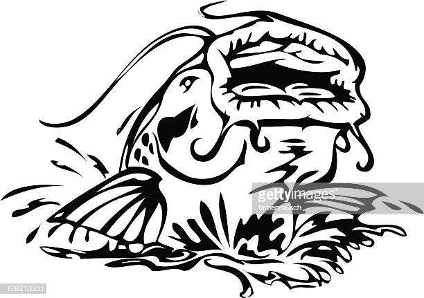 30 Top Catfish Stock Illustrations, Clip art, Cartoons, & Icons.