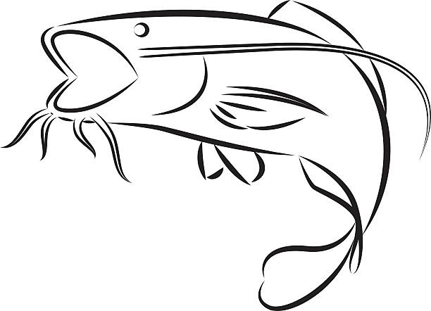 Catfish logo clipart Transparent pictures on F.