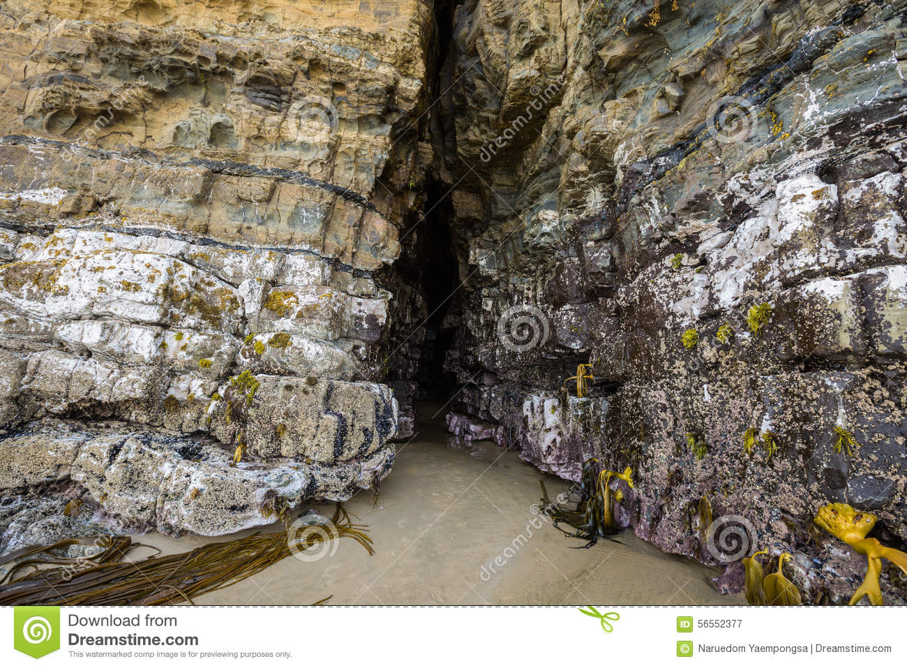 Cathedral Caves, Catlins, South Island,New Zealand Stock Photo.
