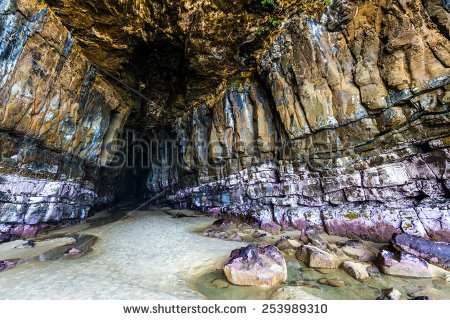 Majestic Cathedral Caves Catlins South Otago Stock Photo 253989292.
