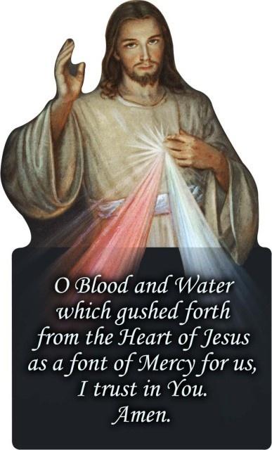 divine mercy of jesus quotes.