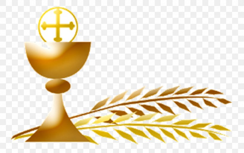 First Communion Eucharist Extraordinary Minister Of Holy.