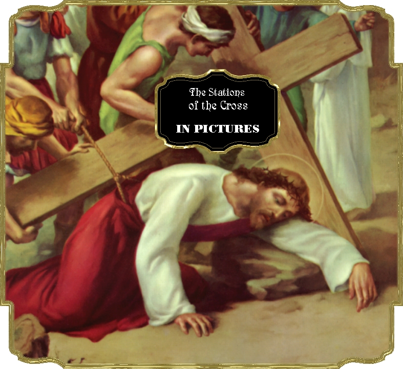 THE STATIONS OF THE CROSS IN PICTURES.