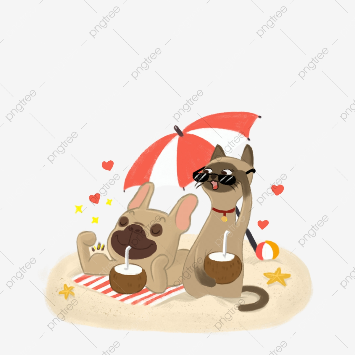 Cats And Dogs Stock Photography, Photography Clipart, Cat, Dog PNG.