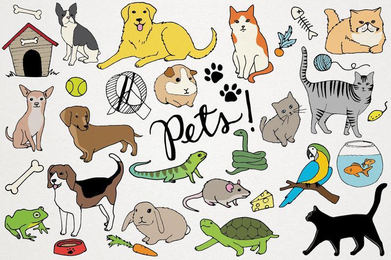 Pets Clipart.