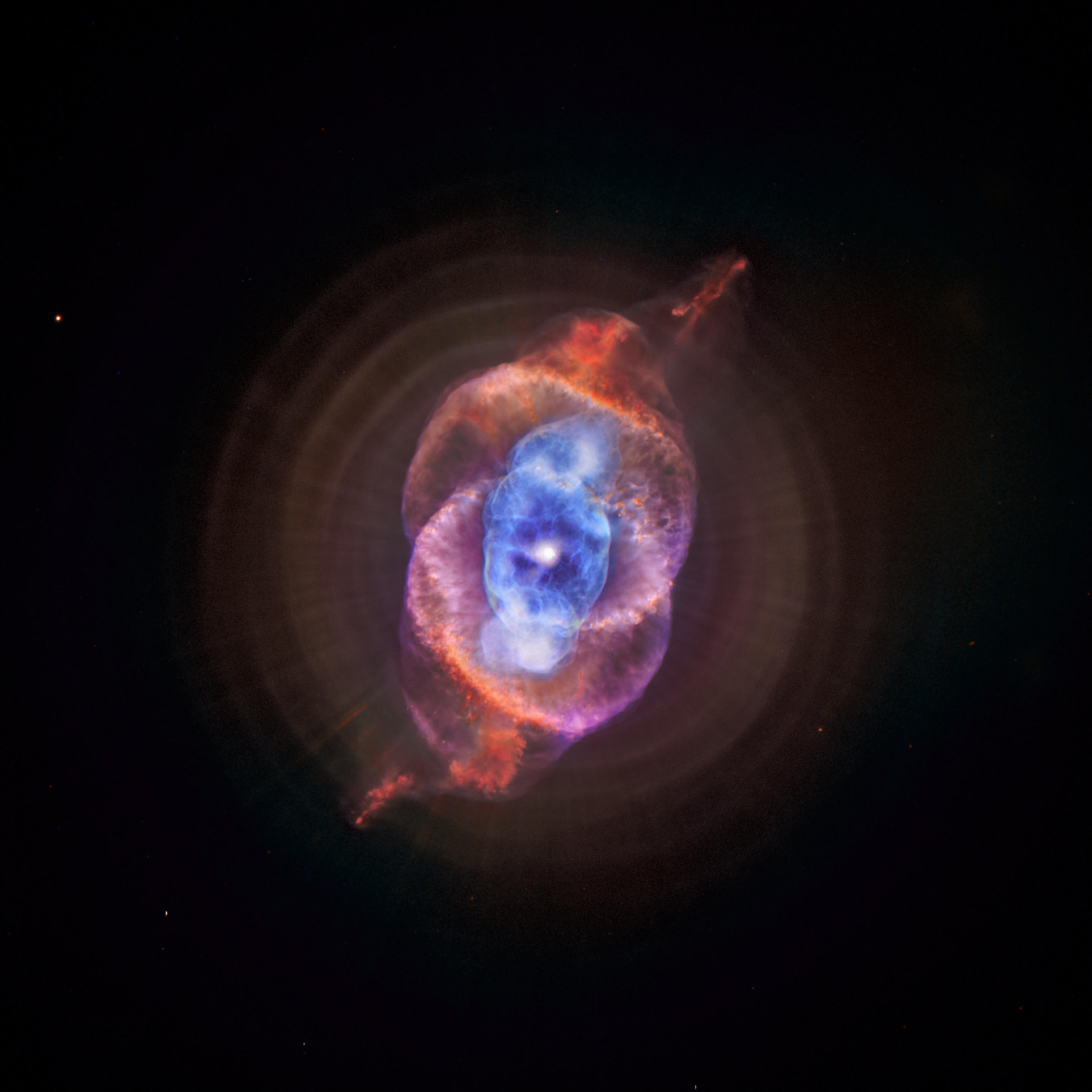 A New View of the Tarantula Nebula.