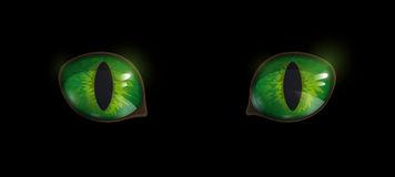 Black Cat Green Eyes Stock Illustrations.
