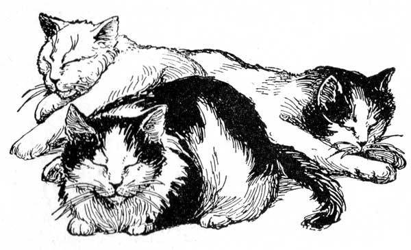 How to draw cats sleeping clipart.