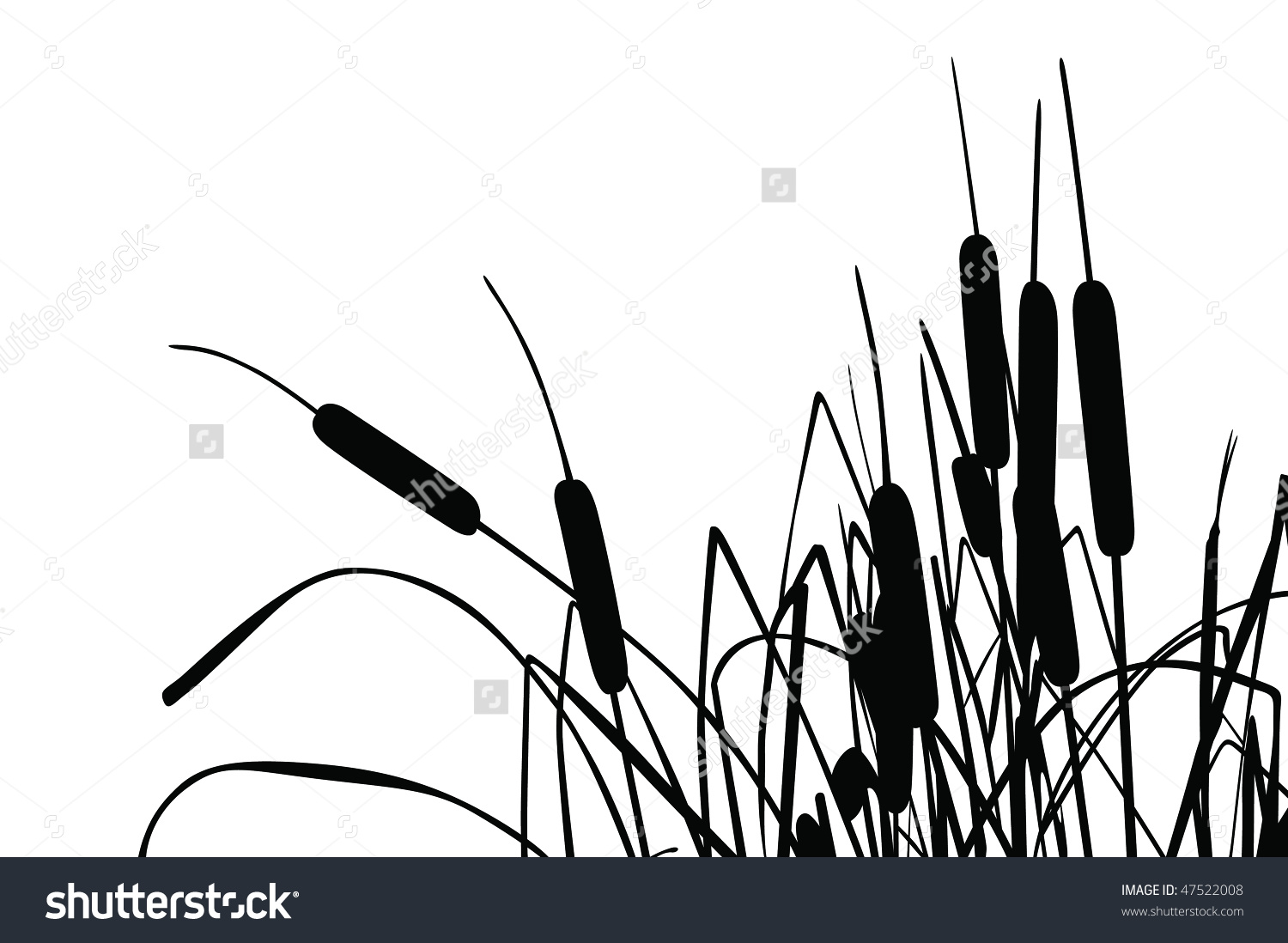 Cattail clipart black and white.