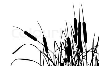 Vector illustration of grass.