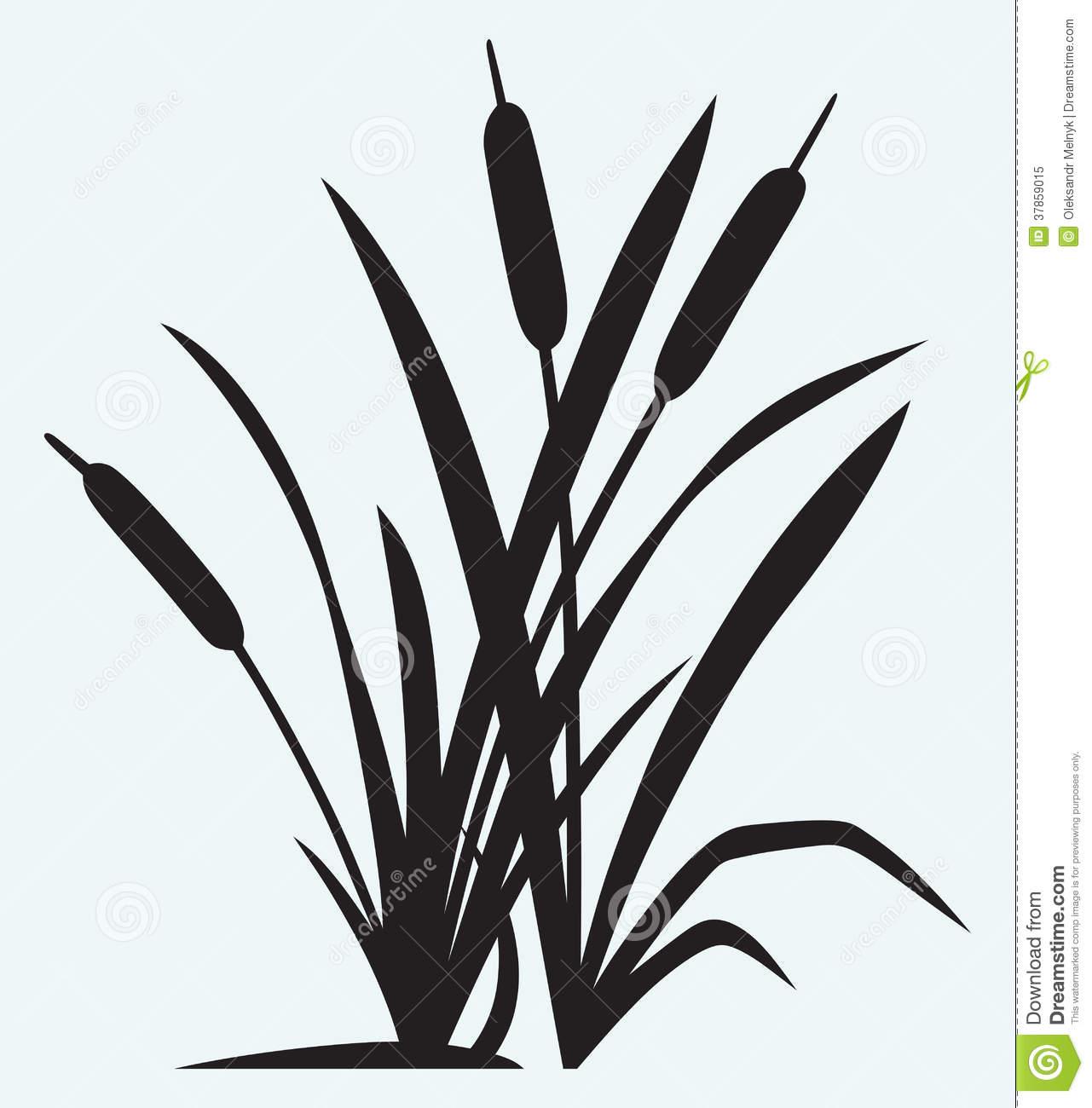 Cattail Black Clipart.