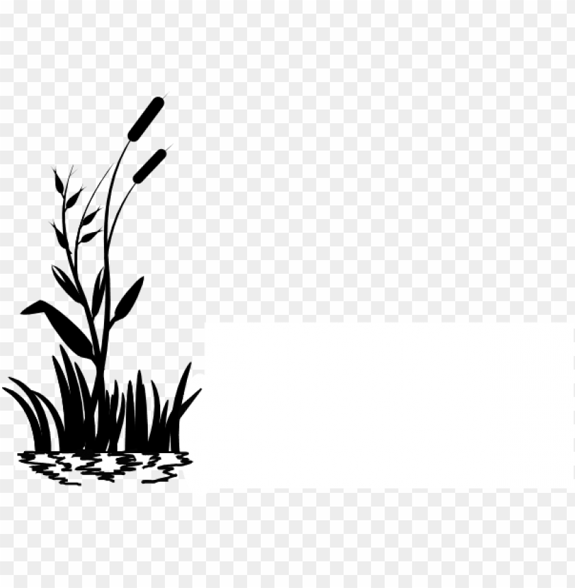 icture royalty free stock cattail clip art at clker.