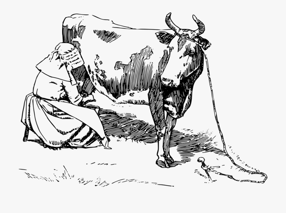 Animal, Cool Woodblock Images, Cow.