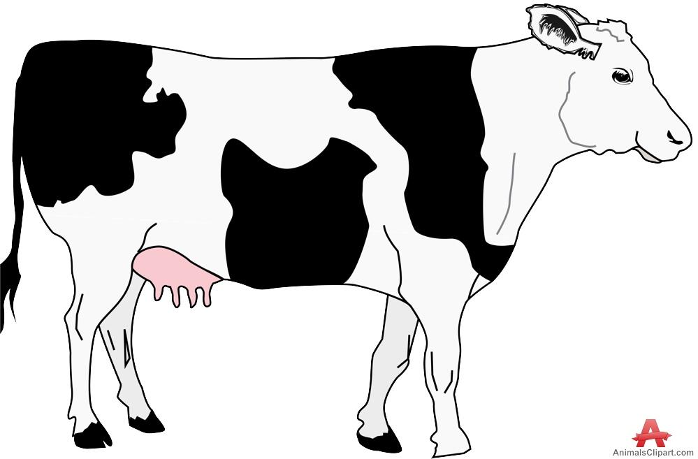 Cow with black spots clipart free design clipartandscrap.