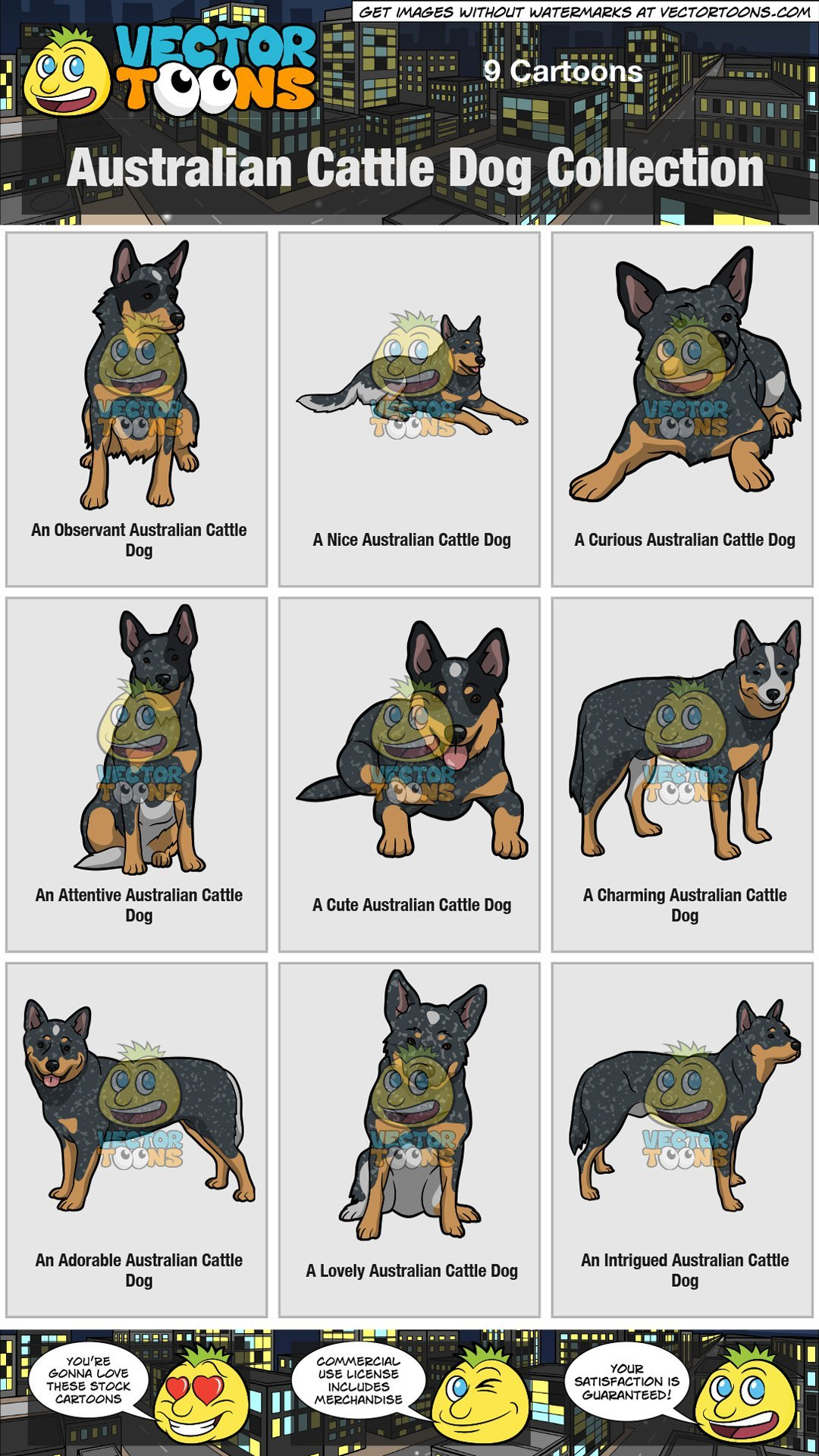 Australian Cattle Dog Collection.