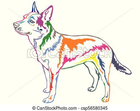 Colorful decorative standing portrait of Australian Cattle Dog vector  illustration.