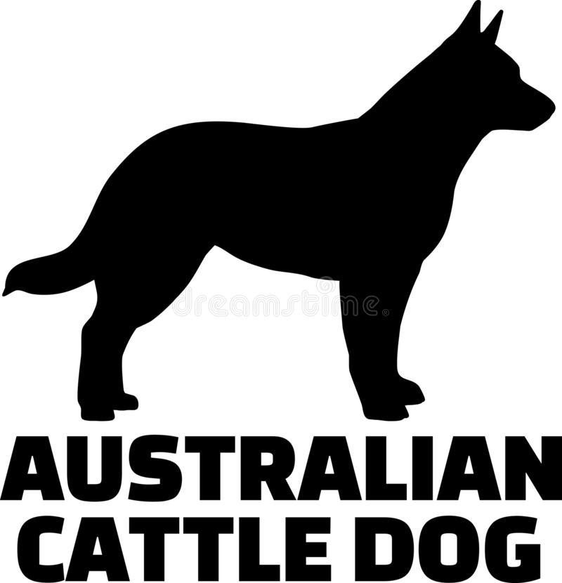 Australian Cattle Dog Stock Illustrations.