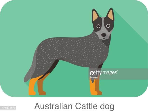 33 Australian Cattle Dog Stock Illustrations, Clip art, Cartoons.
