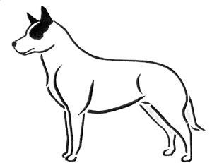 Australian Cattle Dog Outline.