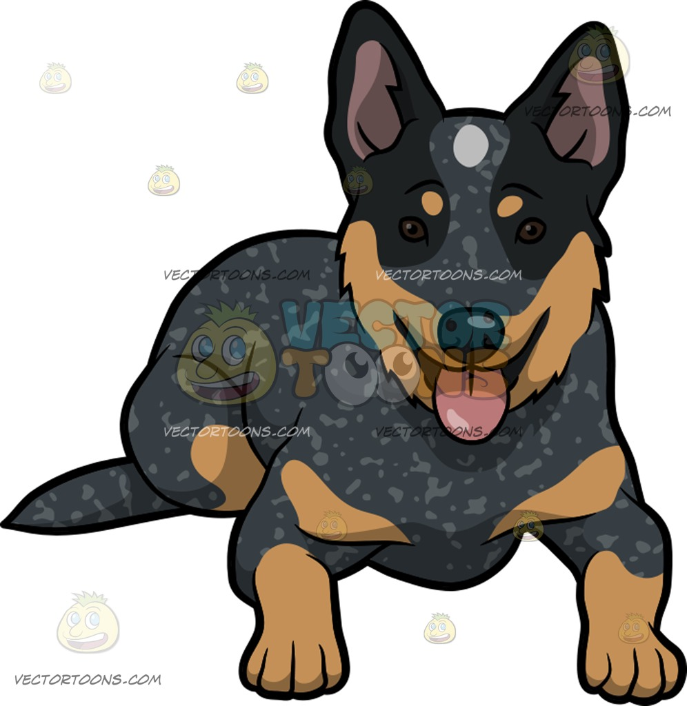 Cattle Dog Clipart.