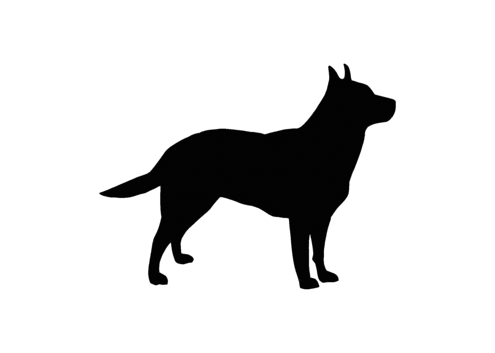 Australian Cattle Dog Clipart.
