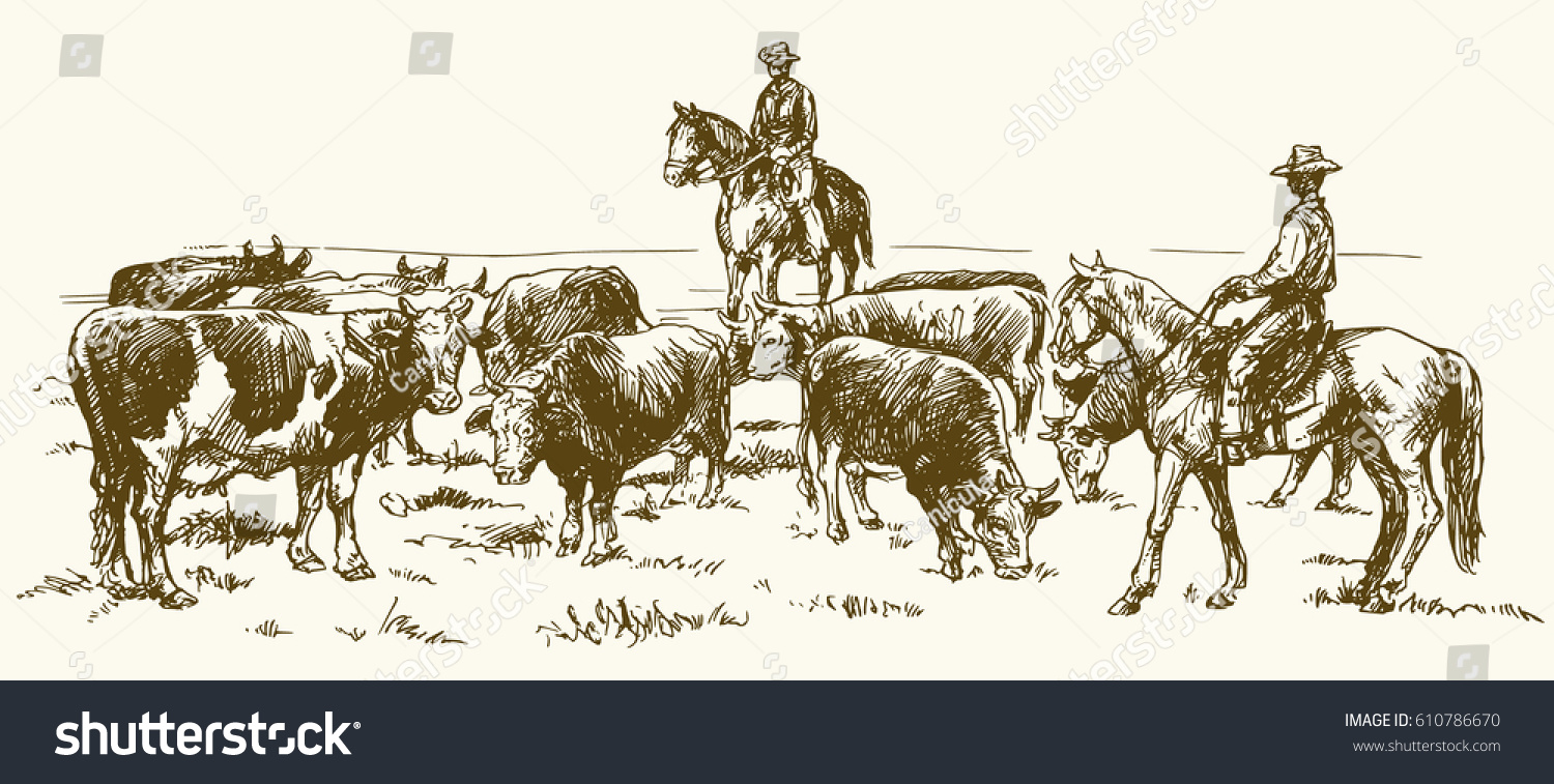 Cattle Drive By Two Cowboys Hand Stock Vector (Royalty Free) 610786670.
