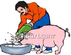 Man Feeding a Pig.