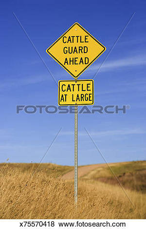 Pictures of Cattle guard road sign x75570418.