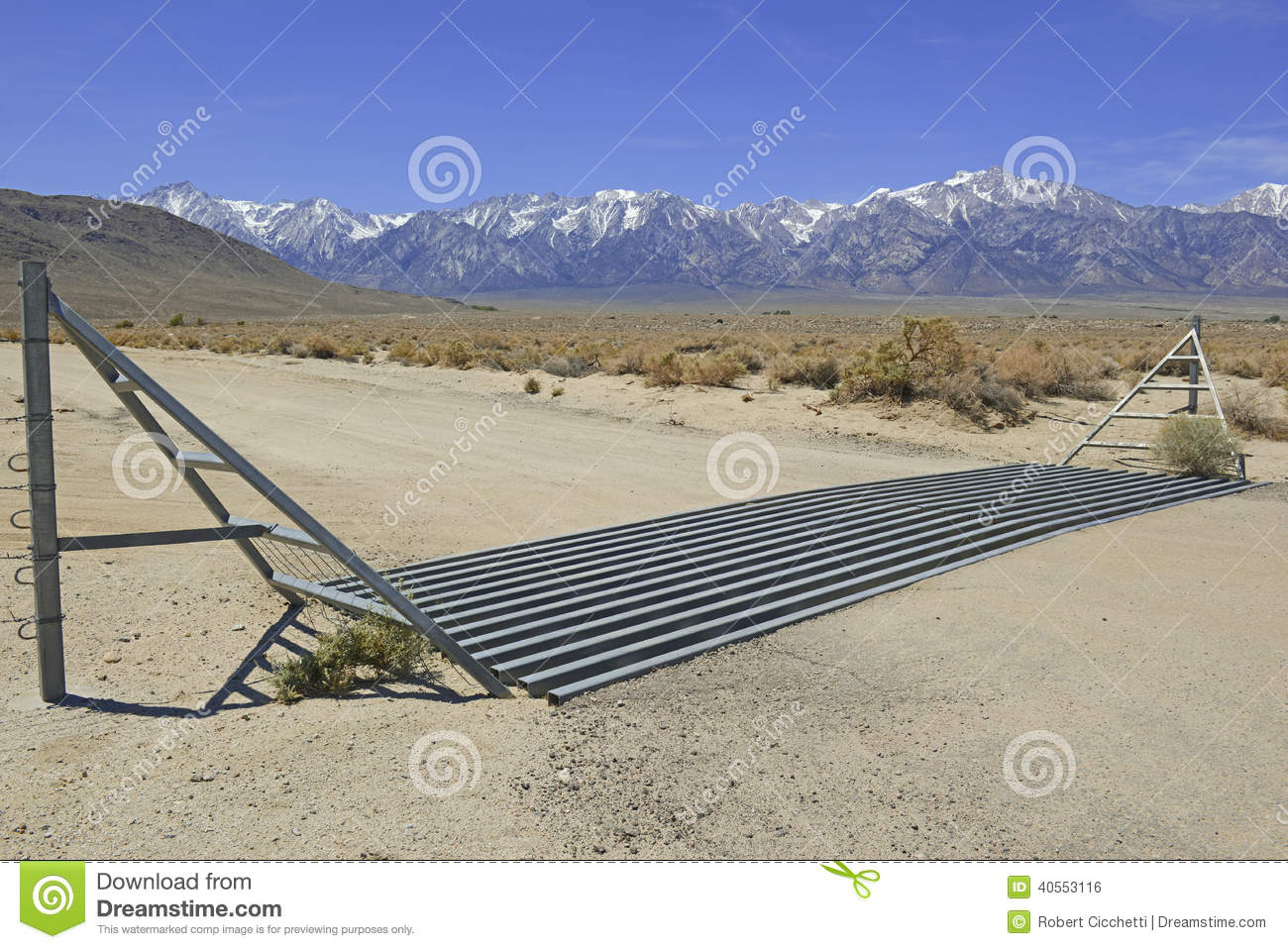 Cattle Guard In Road On Ranch In American West Stock Photo.
