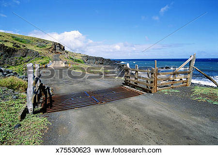 Stock Photo of Coastal road with cattle guard in Maui, Hawaii.