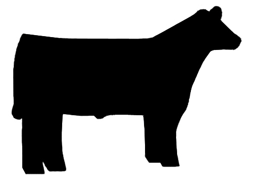 Cattle show clipart #20