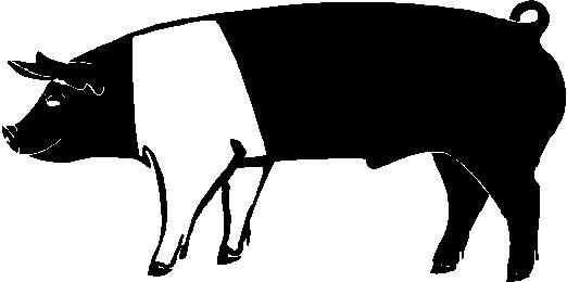 4 h livestock clipart.