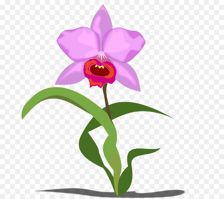 Pink Flower Cartoon clipart.