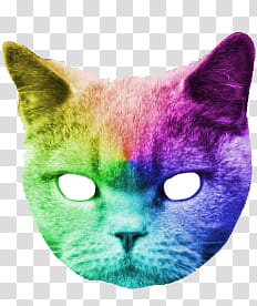 Catwang, multicolored cat transparent background PNG clipart.
