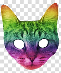 Catwang, green, purple, and pink cat illustration transparent.