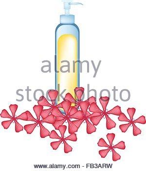 Oil Painting Flower Stock Photos & Oil Painting Flower Stock.