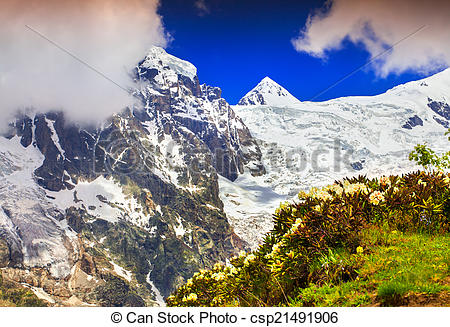 Stock Photography of Alpine meadows in the Caucasus mountains.