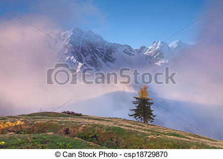 Picture of Early spring in the Caucasus mountains..