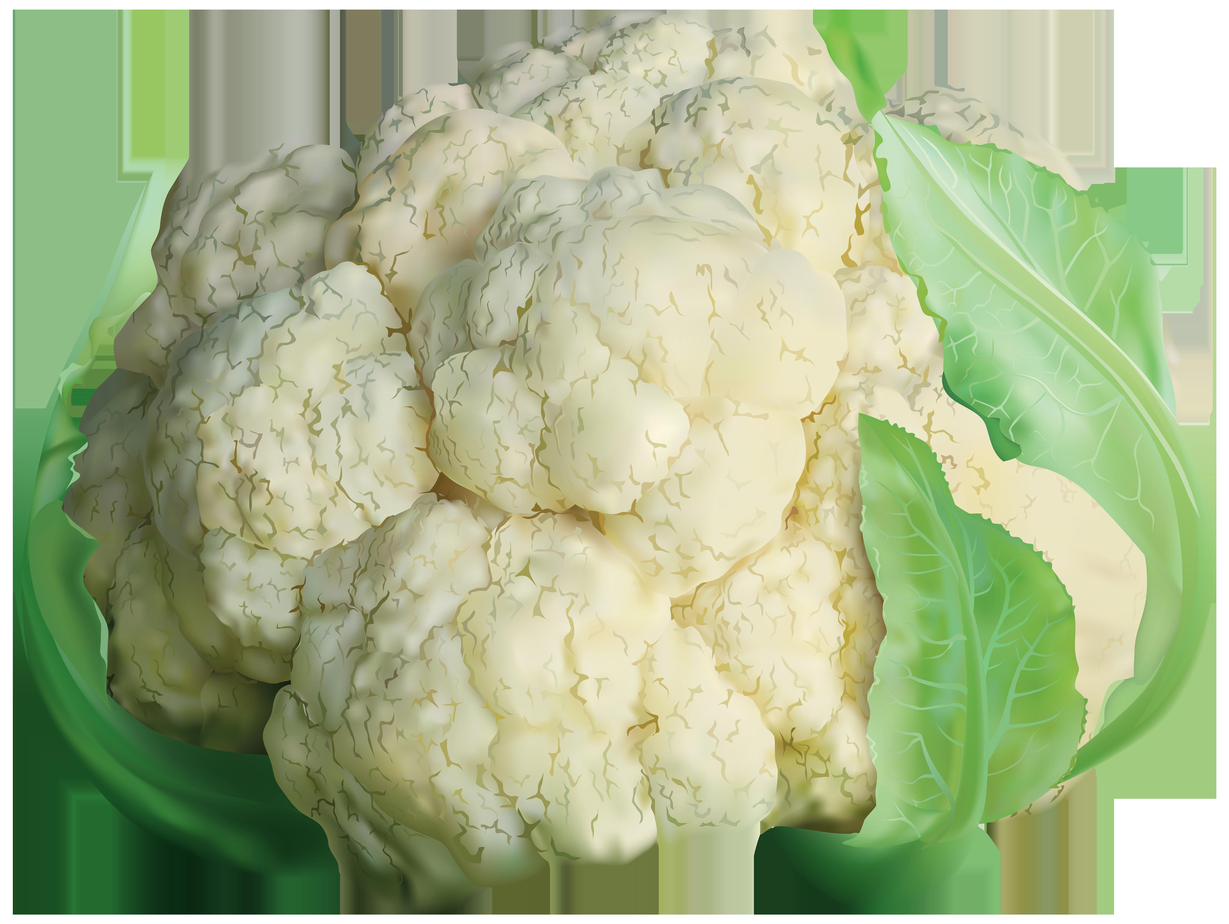 Cauliflower Transparent PNG Clip Art Image.