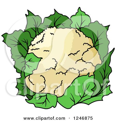 Cauliflower Clipart Page 1.
