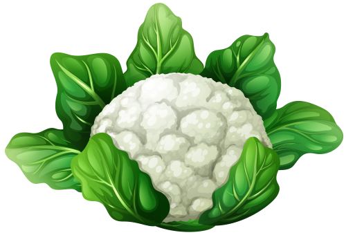 green cauliflower clipart clipground clipart school free download free classroom clipart for teachers