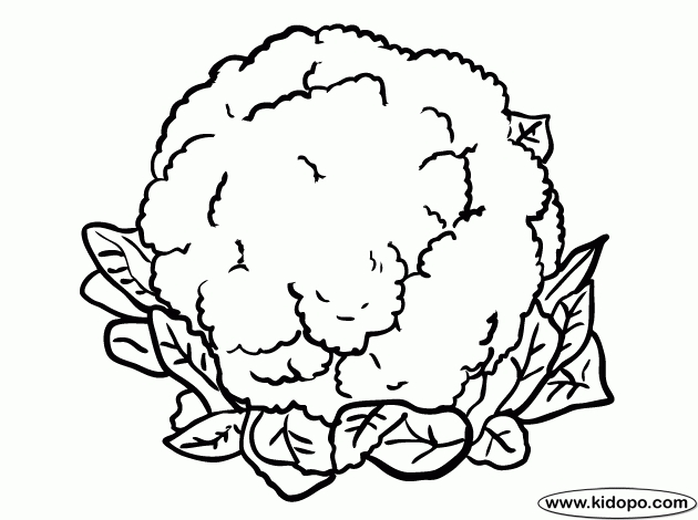 Cauliflower Coloring Pages inside Best Of Cauliflower.