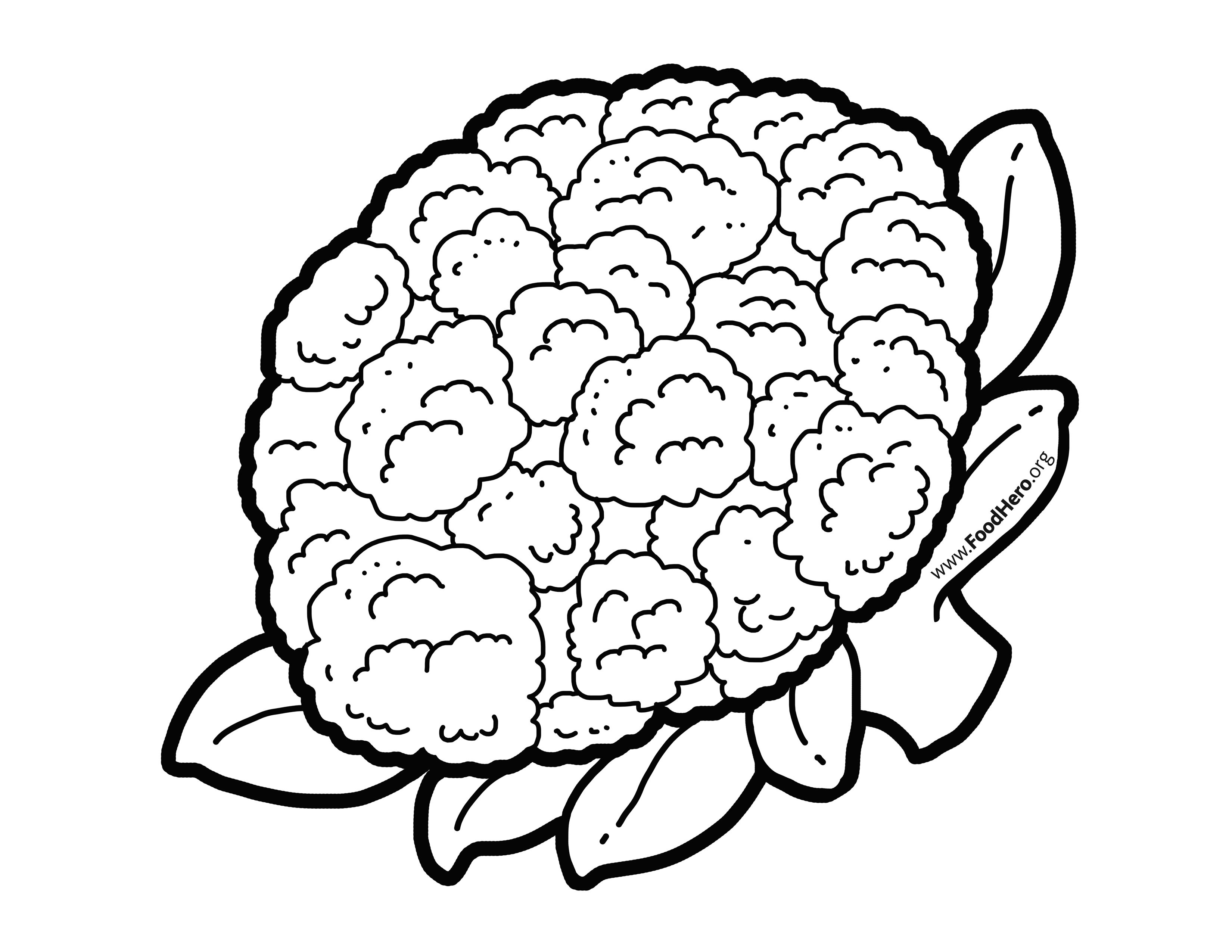 Cauliflower. Illustration found at foodhero.org.
