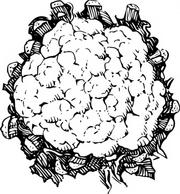 Cauliflower clipart black and white 2 » Clipart Station.
