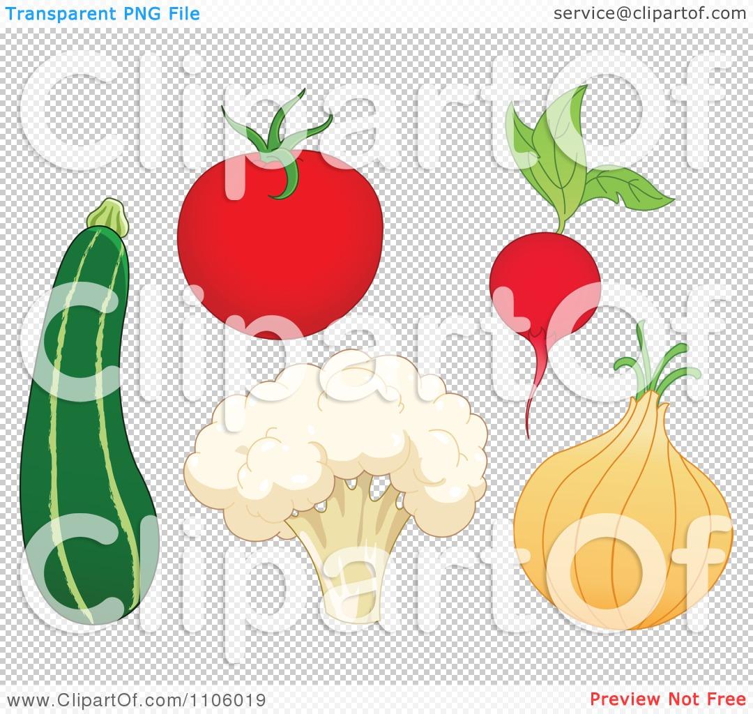 Clipart Whole Foods Zucchini Tomato Cauliflower Radish And Onion.
