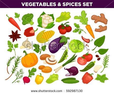 Cauliflower Vectores, imágenes y arte vectorial en stock.