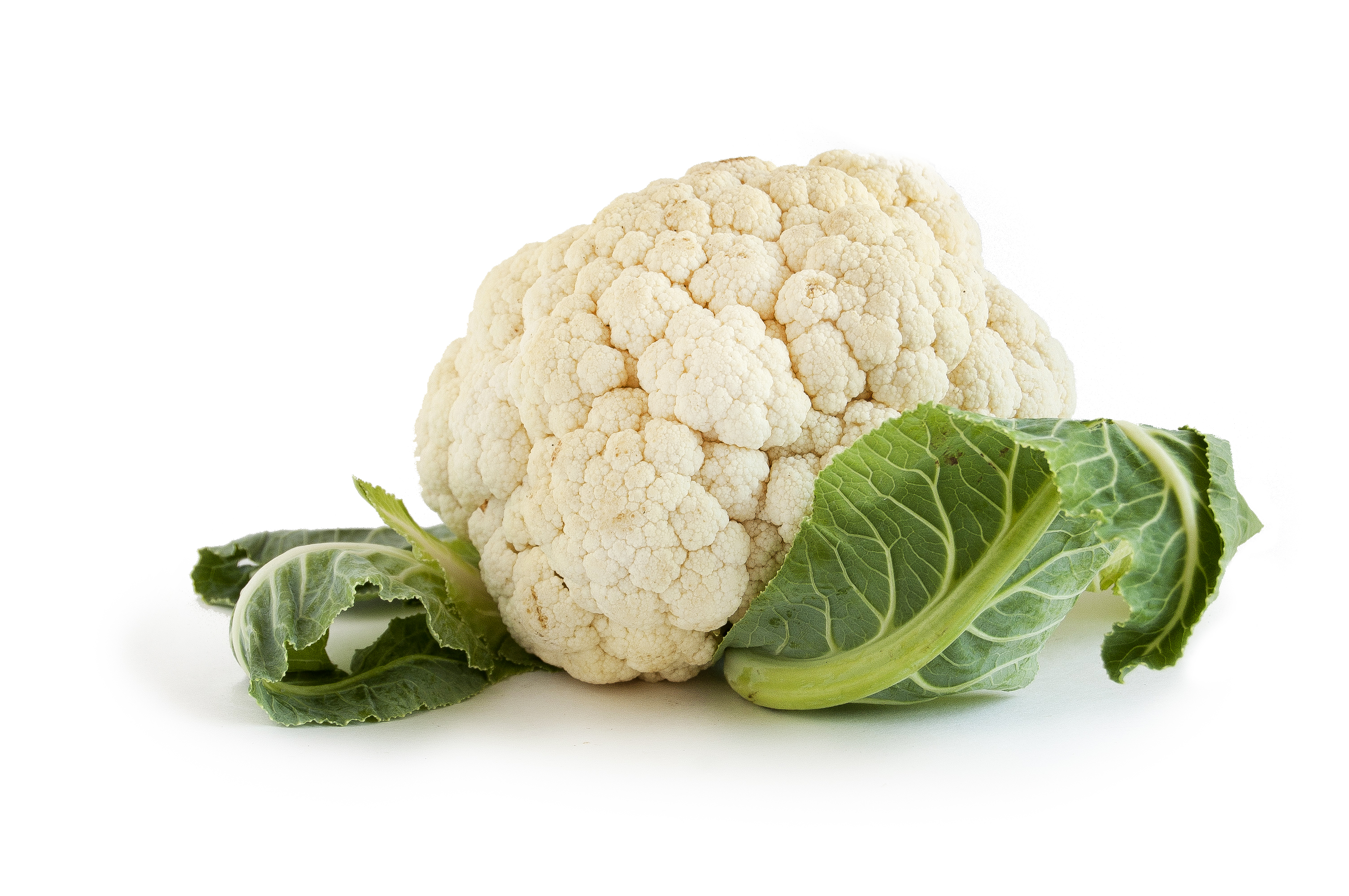 Cauliflower HD PNG Transparent Cauliflower HD.PNG Images..