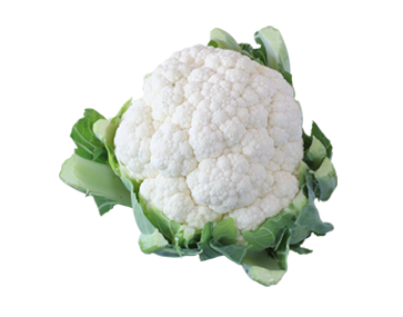 Cauliflower PNG Images Transparent Free Download.