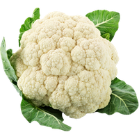 Download Cauliflower Free PNG photo images and clipart.